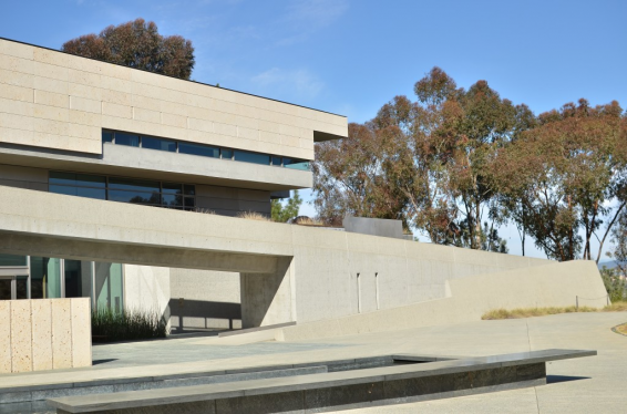 The Neurosciences Institute (La Jolla, California)